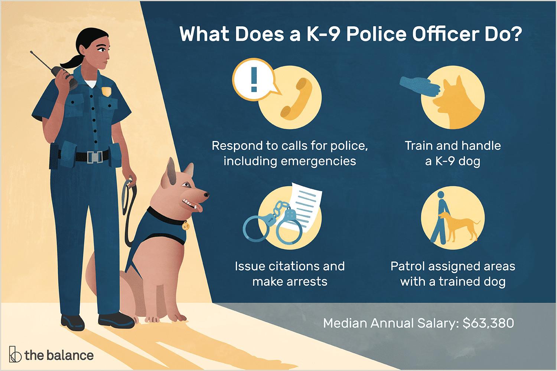 K 9 Police ficer Job Description Salary Skills & More