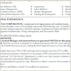 Police Officer Job Description for Resume Police Ficer Job Description for Resume New Resume for