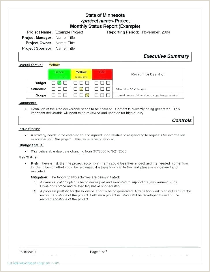 Policy Brief Template Microsoft Word Project Brief Template Word