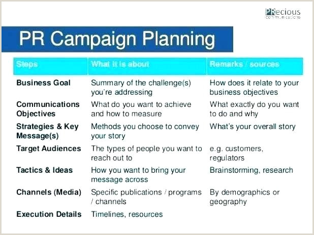 political campaign plan template