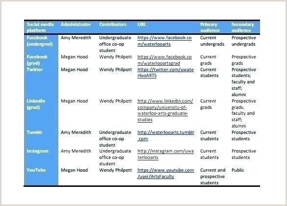 political campaign timeline template