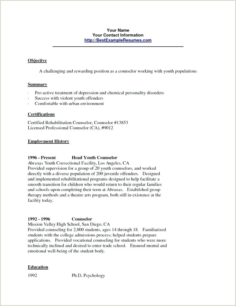 Professional Counselor Resume Resume Youth Counselor Resume