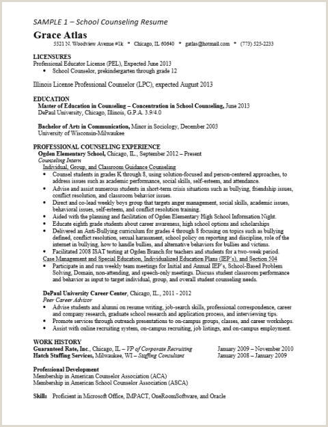 Professional Counselor Resume School Counselor Resume – Salumguilher