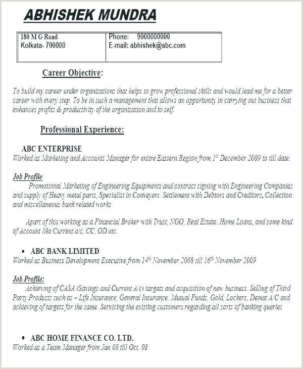 Professional Curriculum Vitae format Doc Curriculum Vitae Template