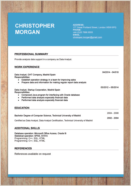 Professional Curriculum Vitae format Doc Free Modern Resume Templates for Word