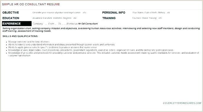Professional Curriculum Vitae format Doc Hr Proposal Template