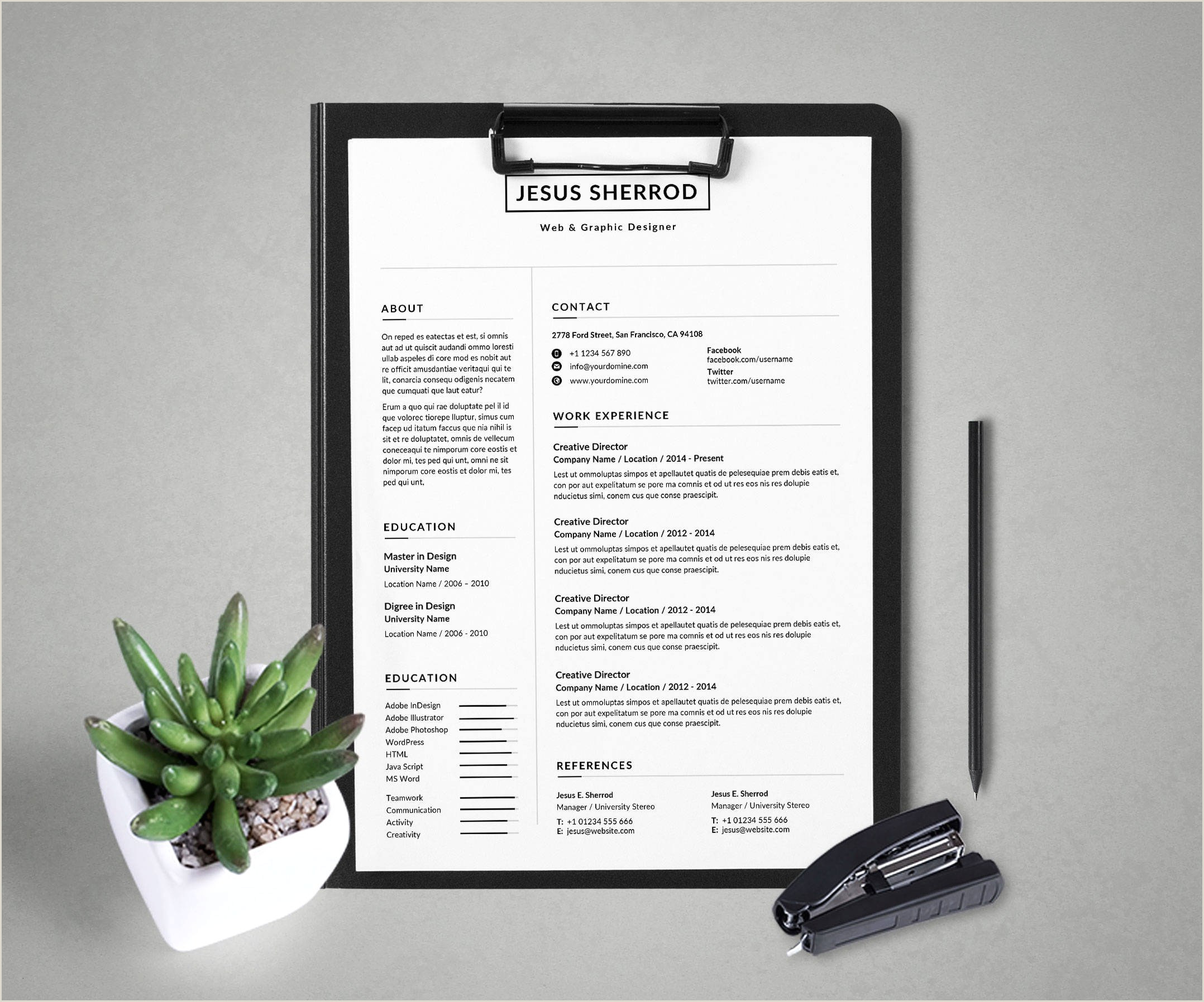 Professional Curriculum Vitae Samples Doc Cv Creative Cv Template Free Modern Resume