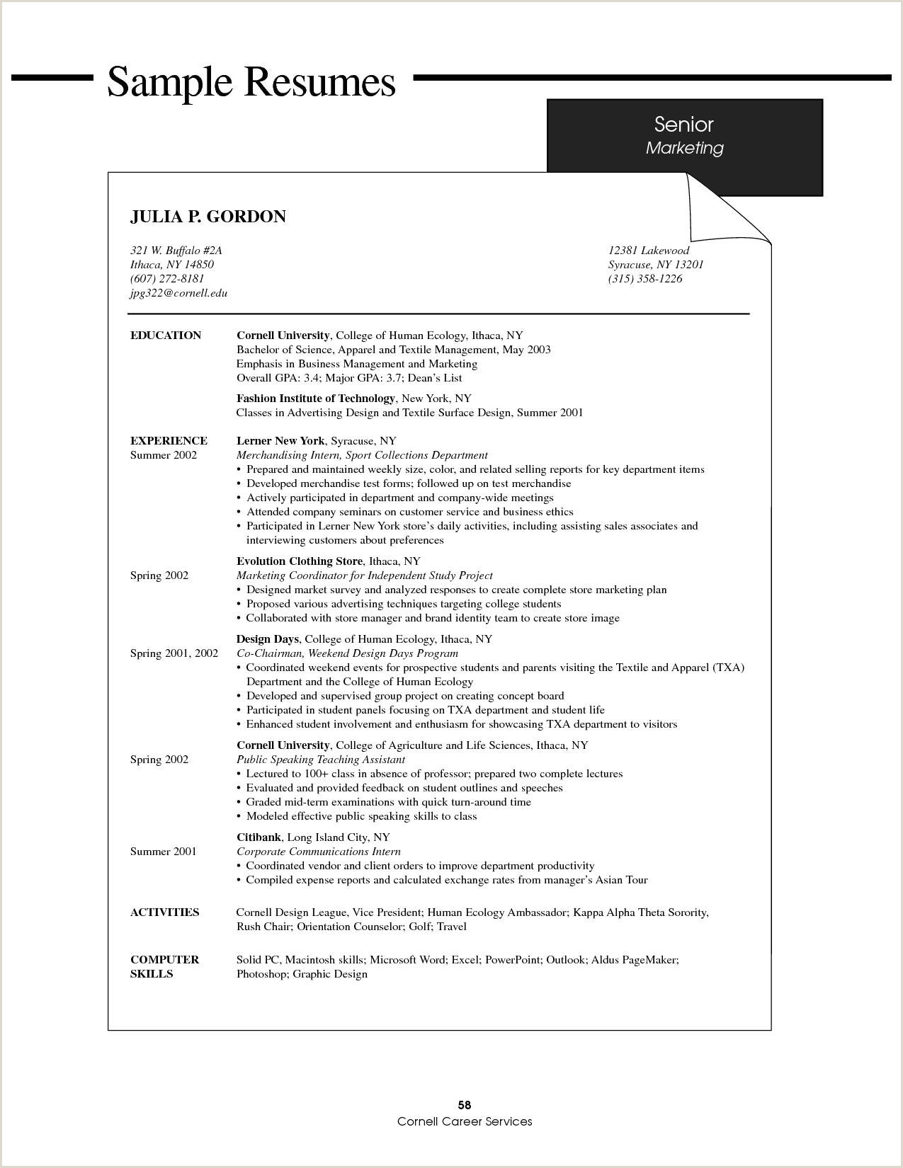 Professional Curriculum Vitae Samples Doc Cv Template Doc Best Resume format Doc Unique Fresh Resume