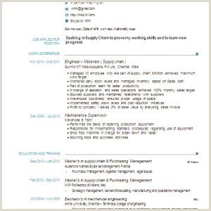 Professional Curriculum Vitae Samples Doc French Cv Template Gratuit Cv Resume Example Doc Valid