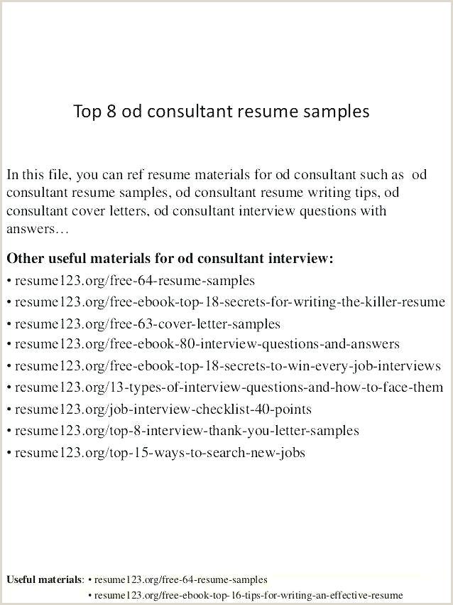 Simple Professional Resume Template Form Best Fresh Job