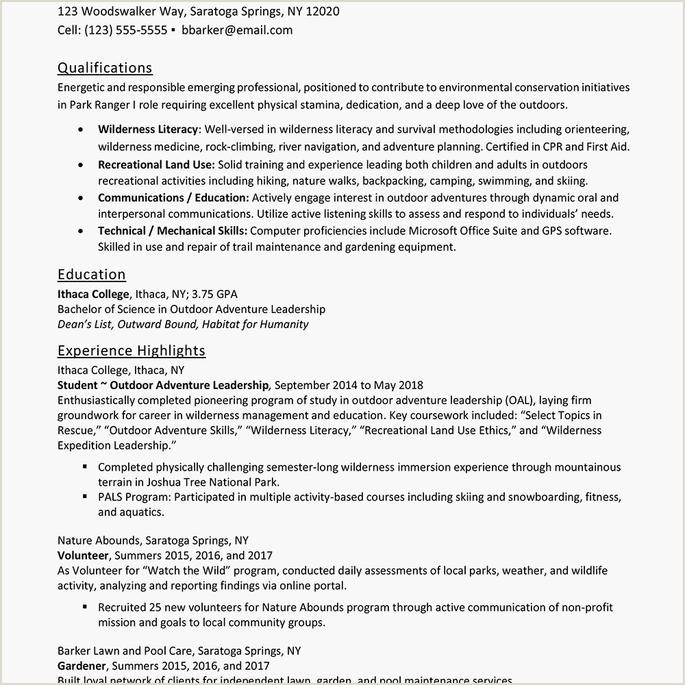 Professional Cv Examples for Teachers Entry Level Resume Examples and Writing Tips