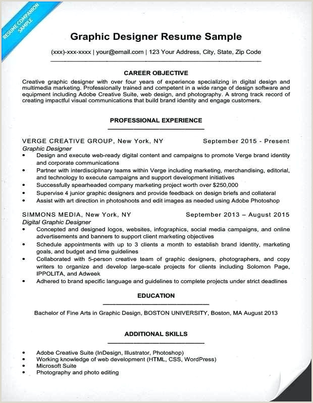Resume Editing Best Designer Resume Sample From Resume