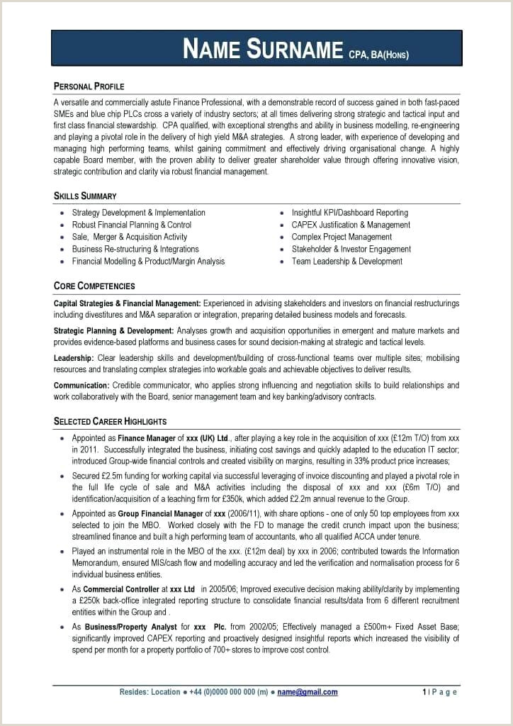 Customize Professional Resume Templates line It
