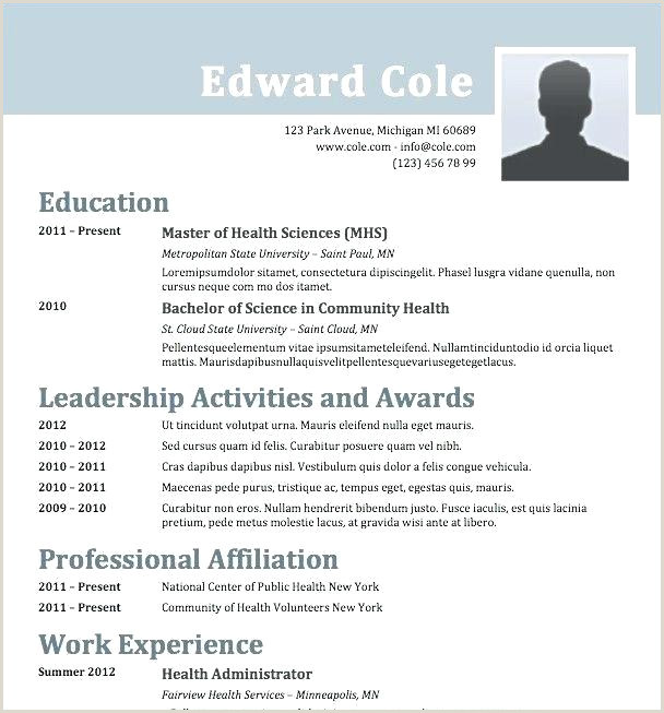 Professional Cv Examples south Africa New Cv Template