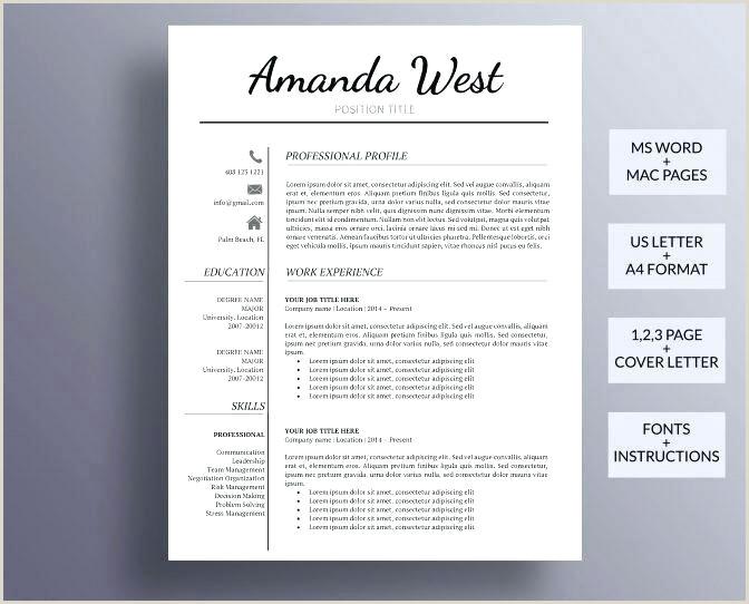 Perfect Resume Template Professional Curriculum Vitae Format