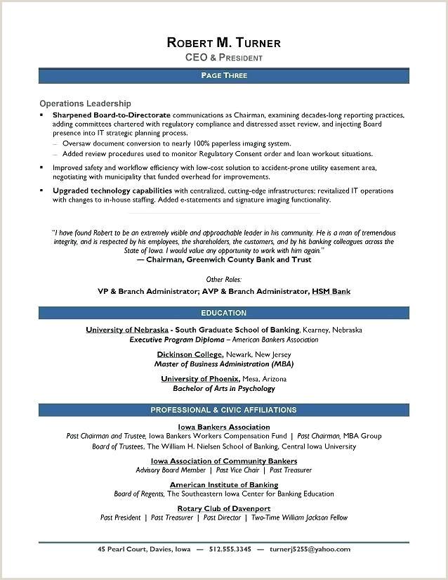 Award Winning Sample Resume Resume Writer Executive Resume