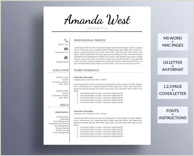 Professional Cv format Download Pdf Perfect Resume Template Professional Curriculum Vitae format
