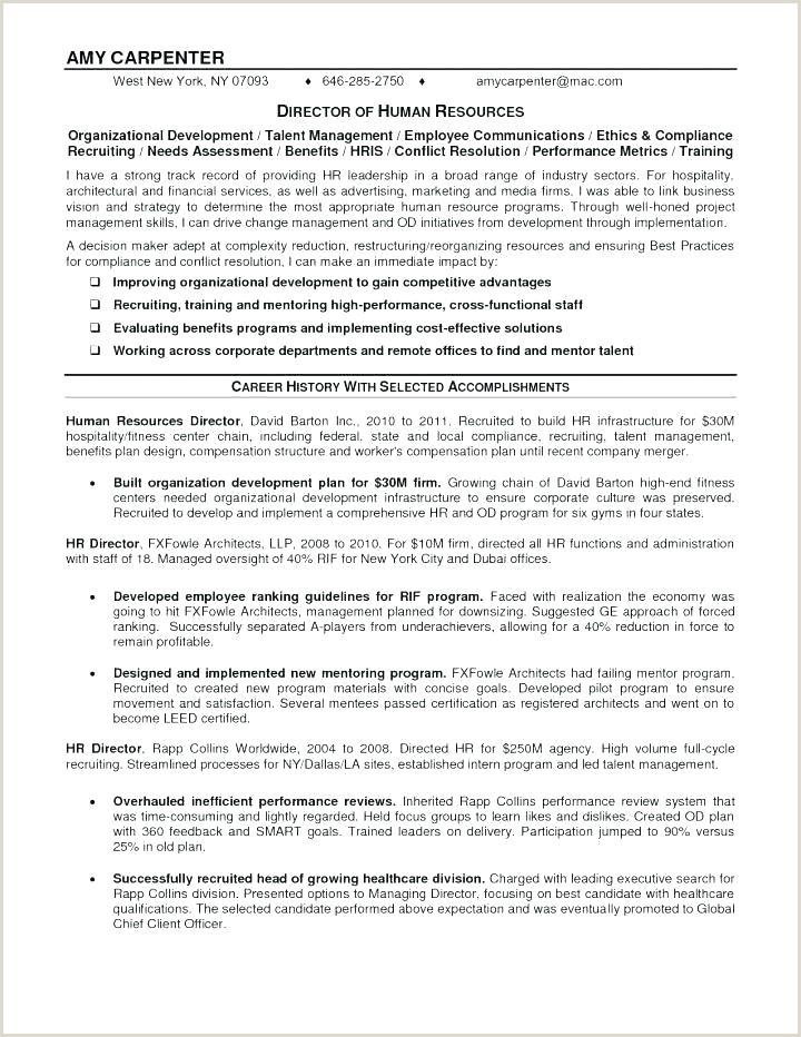 Professional Cv format Dubai Business Fact Sheet Example Client Face Sheet Template Cv