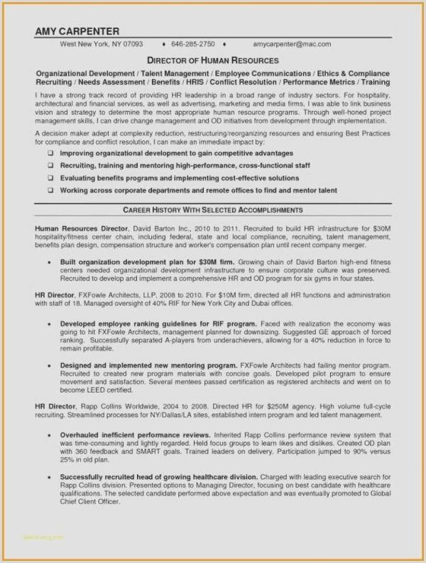 Professional Cv format Dubai Chief Operating Ficer Resume Samples New Administrative
