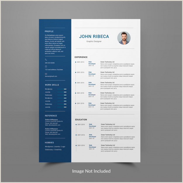 Professional Cv format Editable Resume or Cv Template Editable Psd File