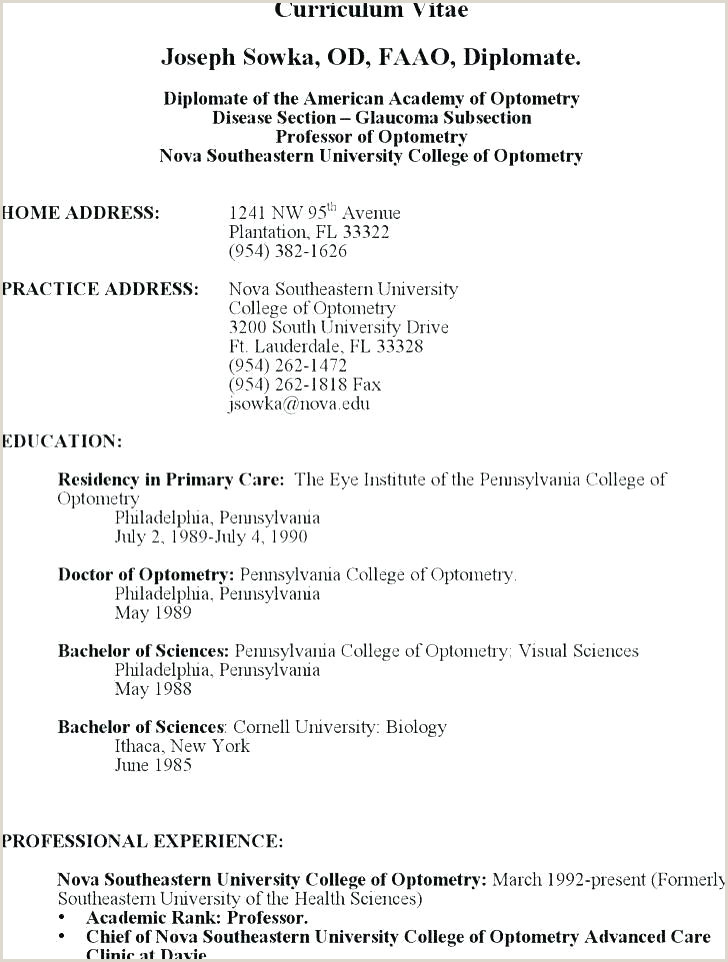 Professional Cv format Engineers Technical Resume Template