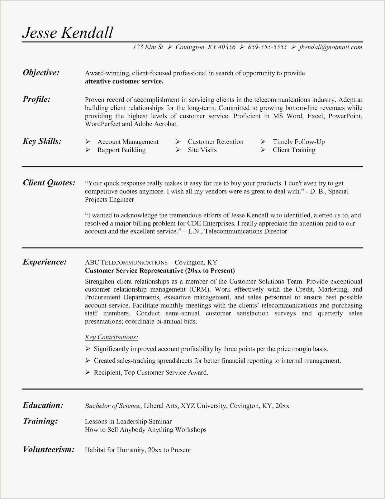 Professional Cv format Example Cv De Stage Meilleur De Best Resume Samples New Resume