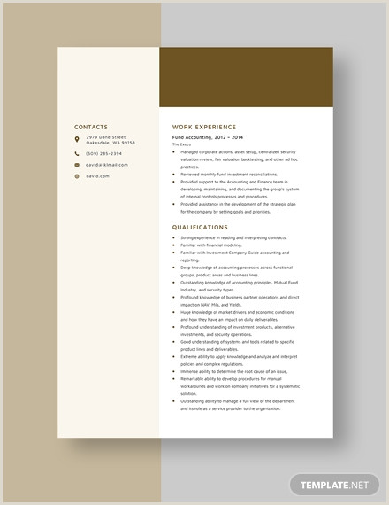 Professional Cv format for Accountant Fund Accounting Resume Template Download 3314 Resumes In
