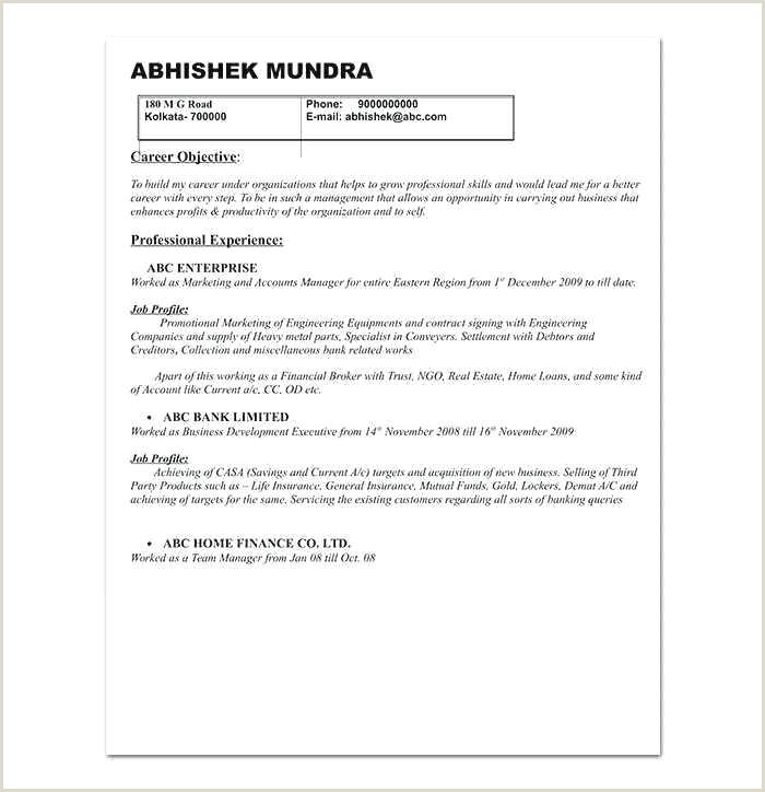 professional sales resume template – allcoastmedia