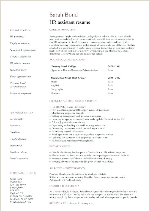 Professional Cv format for Job Law Cv Template