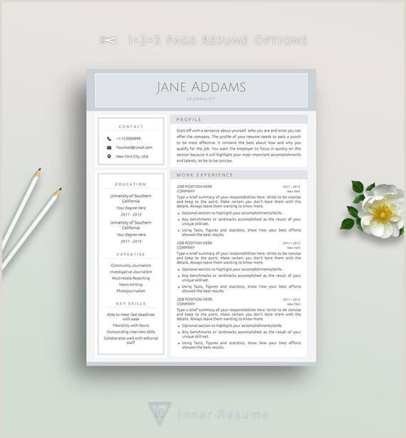 Professional Resume Template Journalist