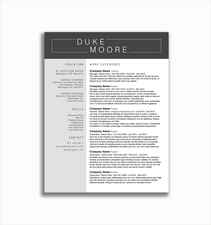 14 University Alabama Resume Template Examples