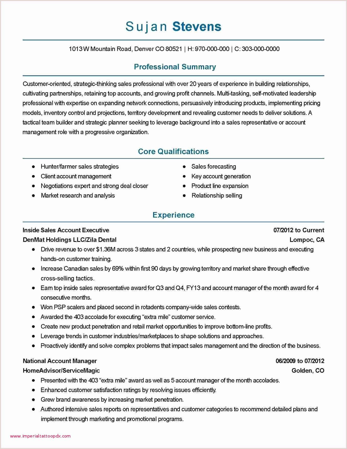 Professional Cv format for Marketing Executive Monthly Sales Report Spreadsheet Sample Resume Sales and