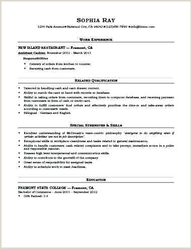 Professional Cv format for Marketing Manager Job Description Sales Executive Cv Template Doc Resume