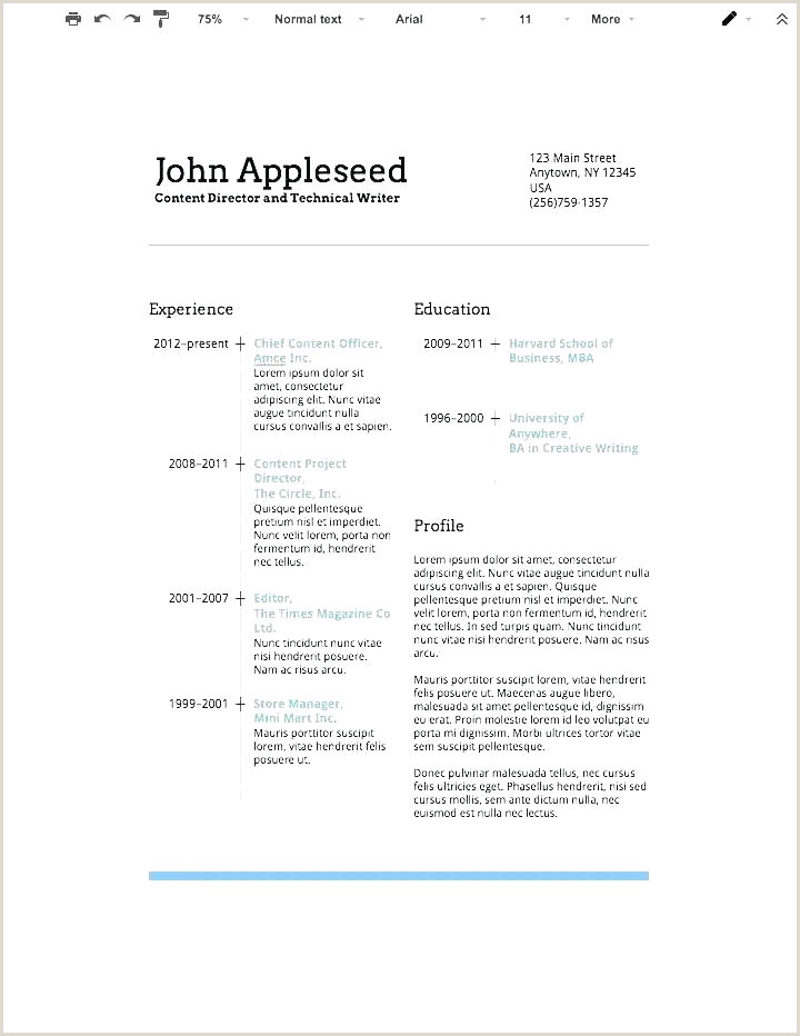 Professional Cv format for Mba Unique Mba Resume Template