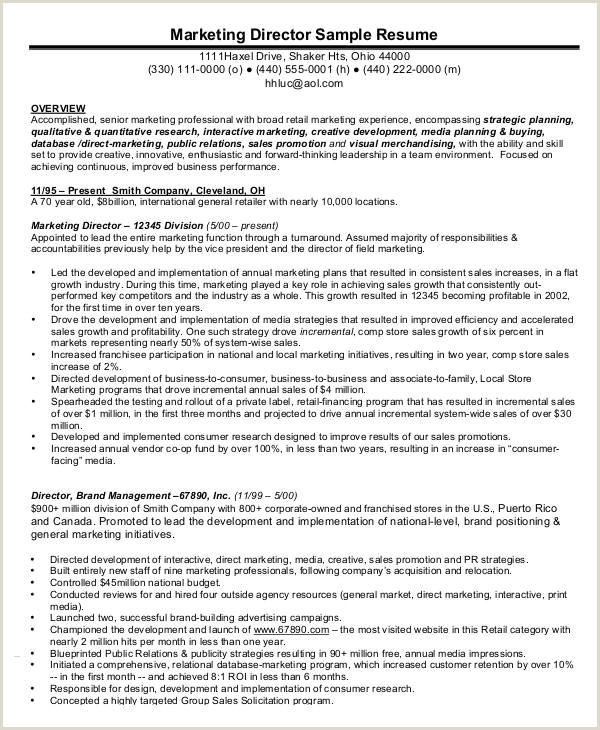 Professional Cv format for Merchandiser 33 Curriculum Vitae Samples Pdf Doc