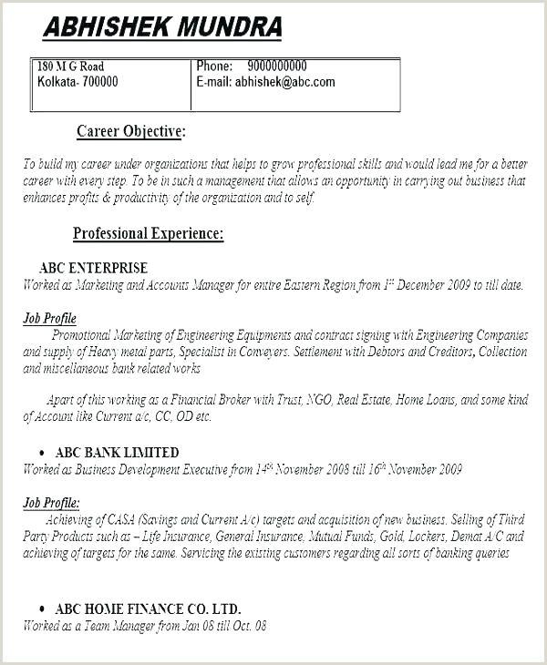 Tefl Cv Template Download Teacher Resume No Experience