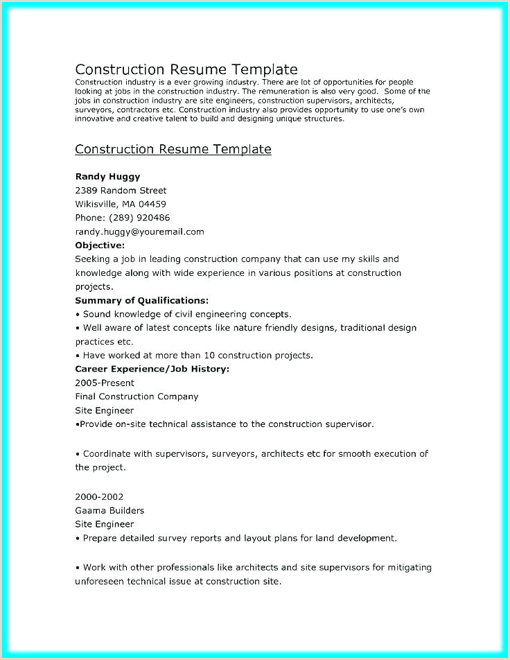 Professional Cv format for Quantity Surveyor It Project Manager Resume Template Technical Sample Download