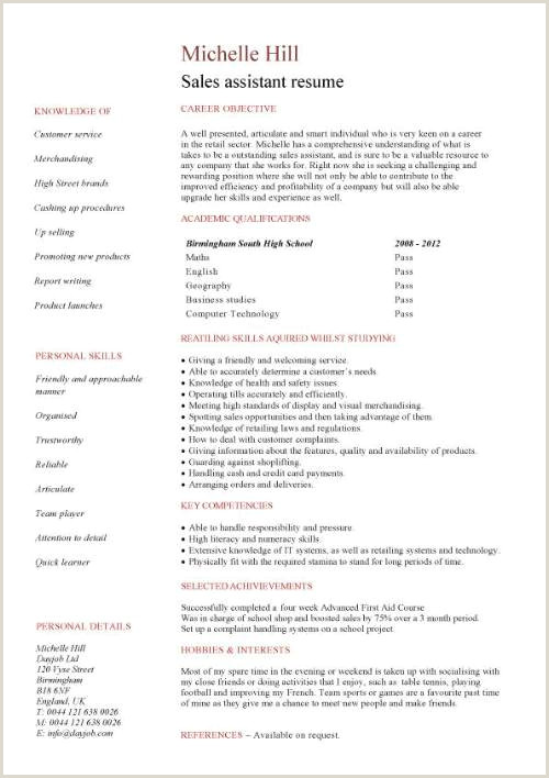 Professional Cv format for Retail Student Entry Level Sales assistant Resume Template