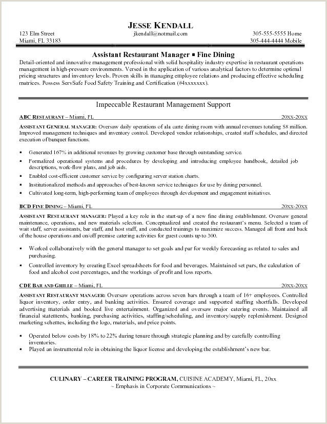 Elegant Safety ficer Resume