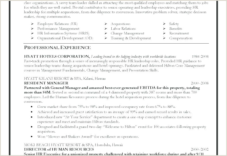 Professional Cv format for Safety Officer the top 4 Executive Resume Examples Written by A