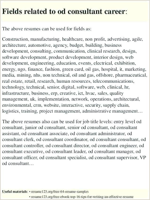Professional Executive Resume Template Free Executive Resume