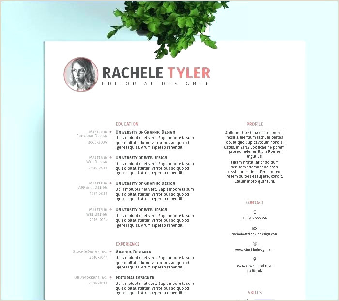 Professional Cv format for software Developer software Engineer Cv Example Nouveau software Developer