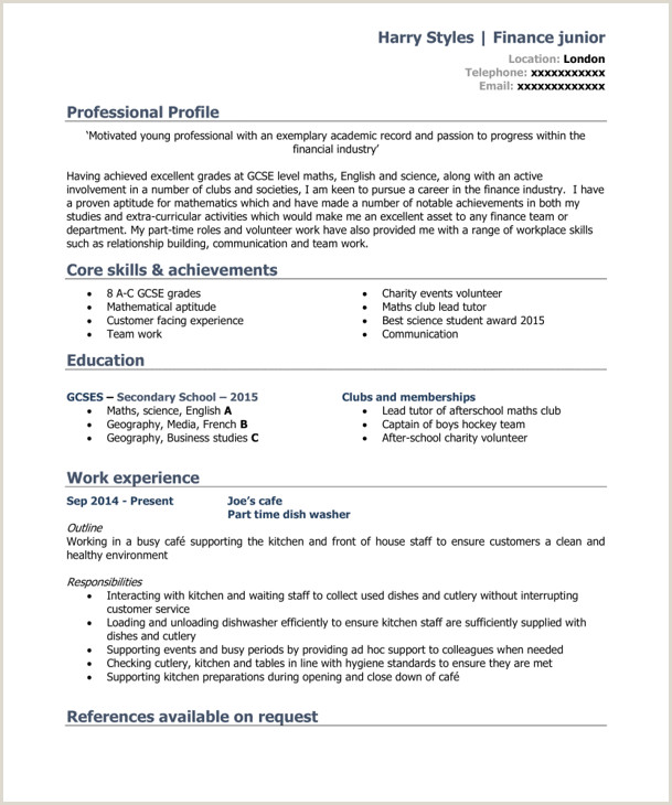 Professional Cv format for Waiter 7 Best Cv Templates