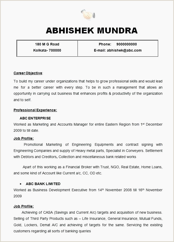 Professional Cv format In Doc Managers Resume Examples Examples German Cv Template Doc 27