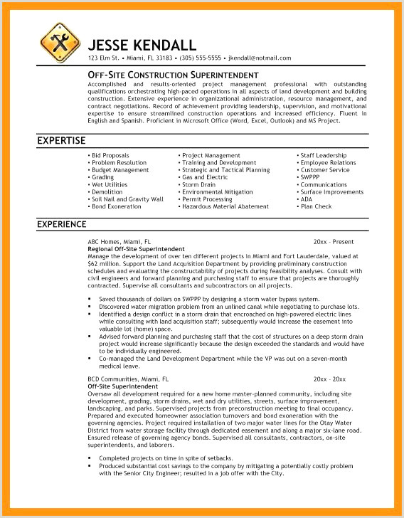 Professional Cv format In Excel Cv Baby Sitting Nouveau Cv Baby Sitter Babysitting Resume