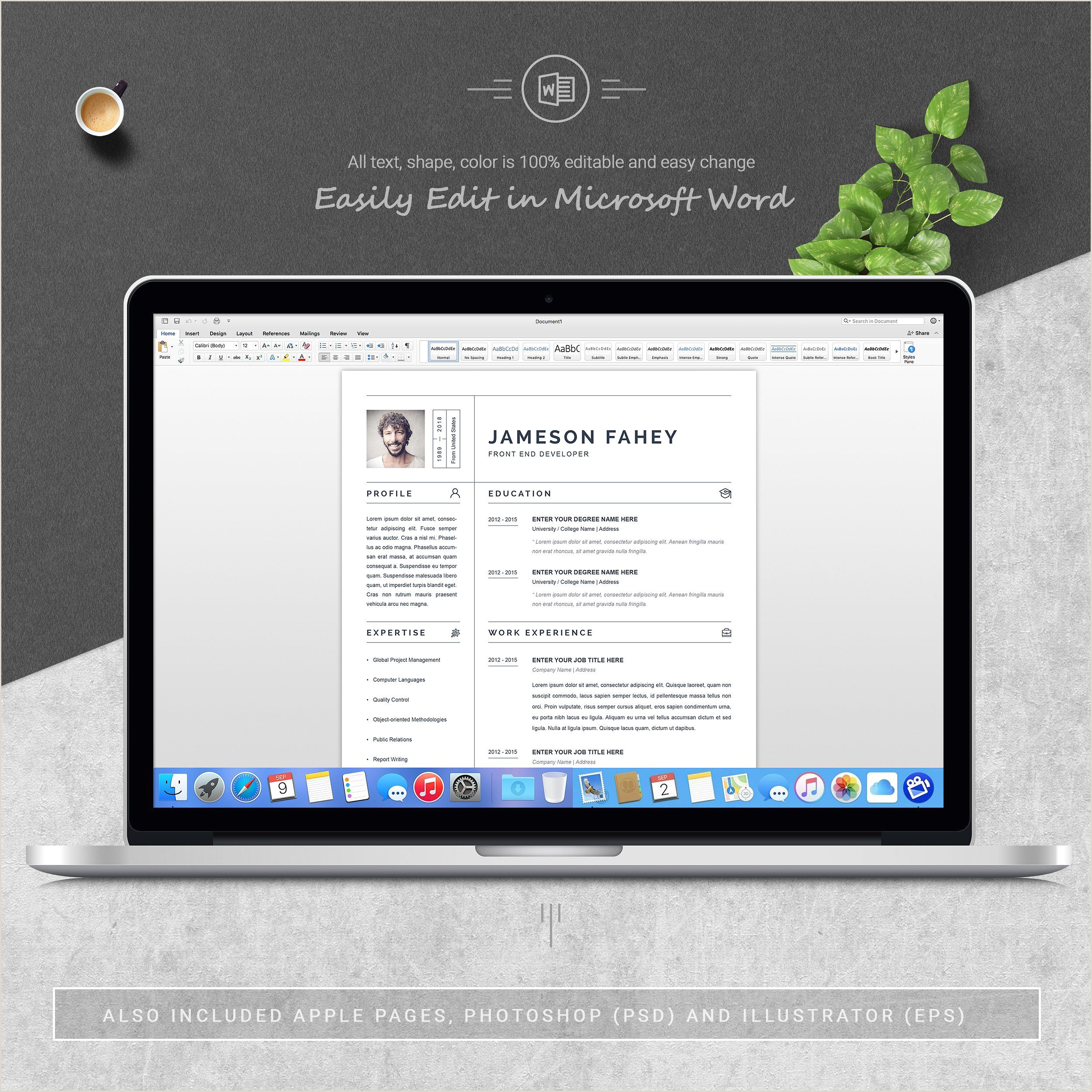 Clean Resume CV Template icons COLOR areas colored