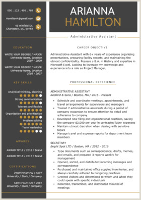 Professional Cv format In Ms Word Pdf Professional Resume Templates Free Download