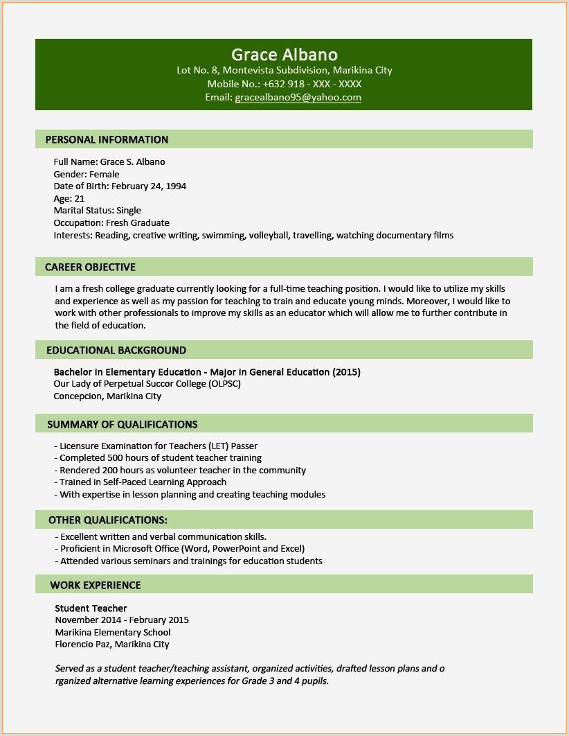 Professional Cv format In Nigeria 10 How to Write Professional Cv Template Nigeria to Success