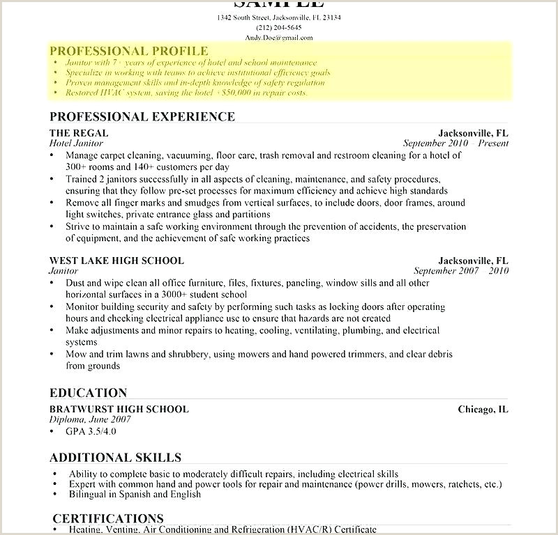 Professional Cv format In Nigeria Professional Profile Resume Template