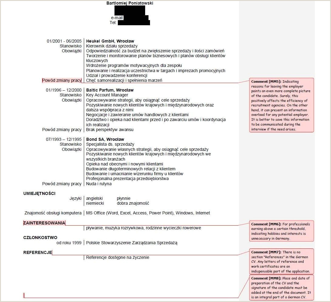 Professional Cv format In south Africa 25 Professional Impressive Resume Examples